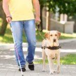 Accompagner les personnes aveugles ou en déficience visuelle